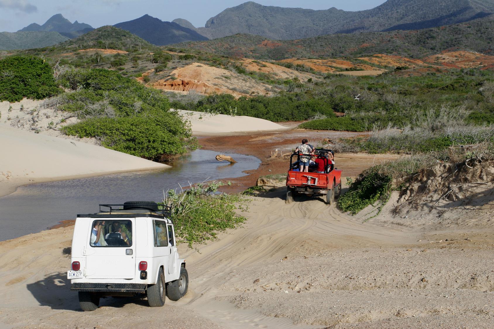safari_tour