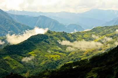 Venezuela Regenwald