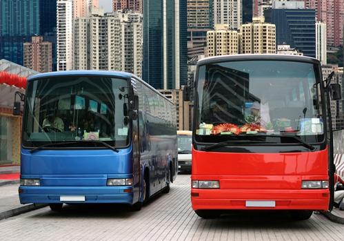 Mit einer Bustour Sehenswürdigkeiten entdecken